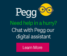 Pegg chat bot